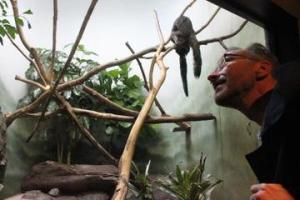 menno-schilthuizen-zoo