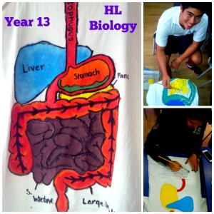 Year 13 HL Biology Digestion T=Shirts