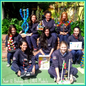 Year 12 DNA Models Group Pic