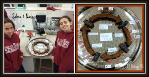 Kreb's Cycle Edible Model-Brownies 2